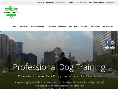 Alpha & Omega Dog Training